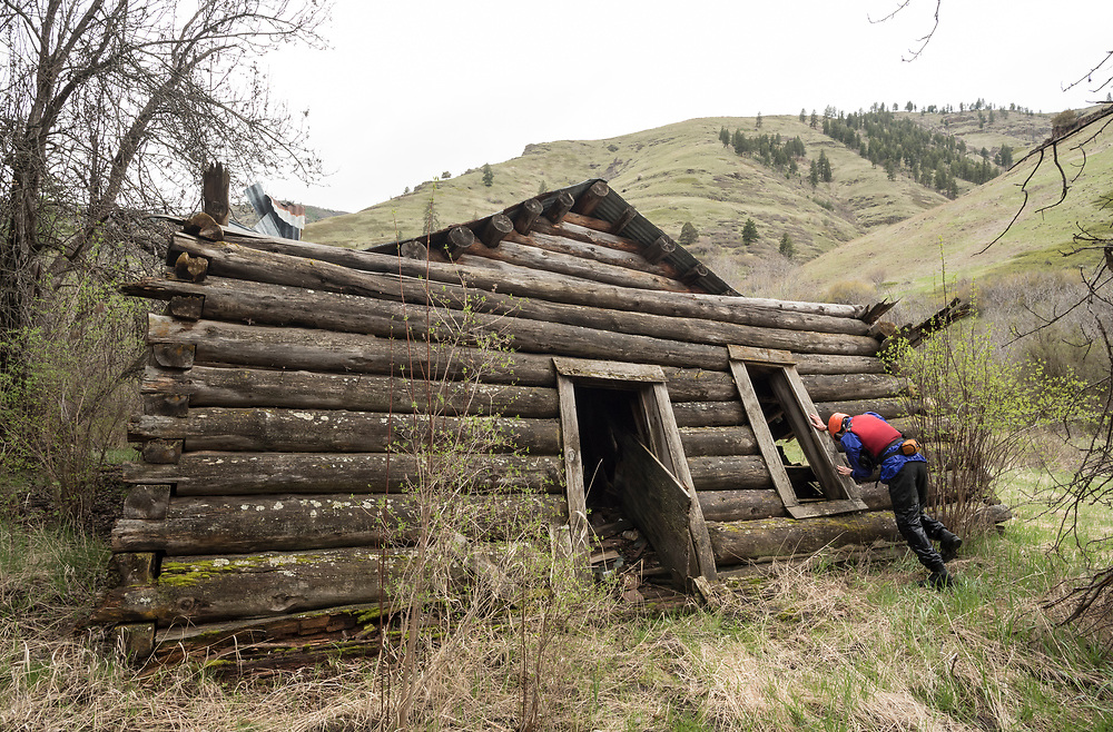 Kayaker pretenting to be pushing an old log cabin over, Joseph Canyon, Oregon.