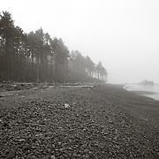Ruby Beach in fog - WA