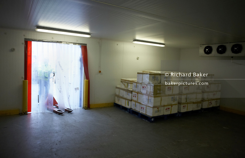Consignment of fresh Maldives tuna held in cold storage at a Heathrow airport warehouse before onwards shipment