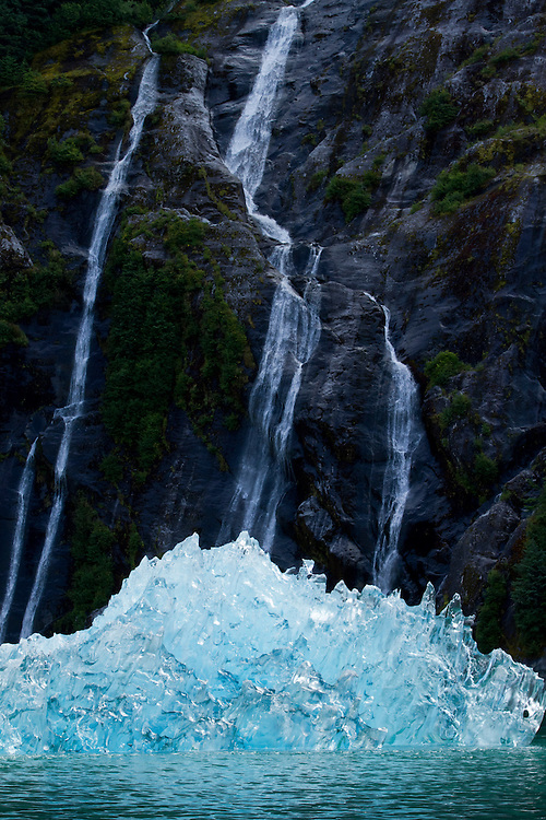 USA, Alaska, Tracy Arm - Fjords Terror Wilderness, Waterfall behind deep blue glacial iceberg floating in Fords Terror on summer morning