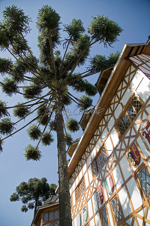 Typical architecture and unique pine trees of Vila Capivari, Campos do Jordao, SP, Brazil.