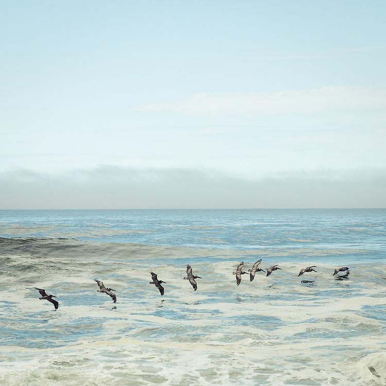 Pacific Coast, Seascape No.18