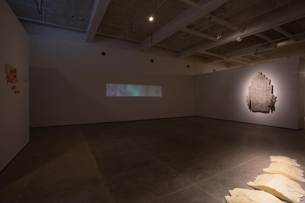 Dominique Haller. Master of Arts Exhibition