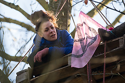 Harefield, UK. 20 January, 2020. An activist sits on a pallet high in a tree at the Colne Valley wildlife protection camp. Extinction Rebellion, Stop HS2 and Save the Colne Valley had reoccupied the camp two days before as part of an ongoing attempt to protect ancient woodland threatened by the HS2 high-speed rail link after a small group of Stop HS2 activists had been evicted by bailiffs over the course of the previous two weeks. 108 ancient woodlands are set to be destroyed by the high-speed rail link.