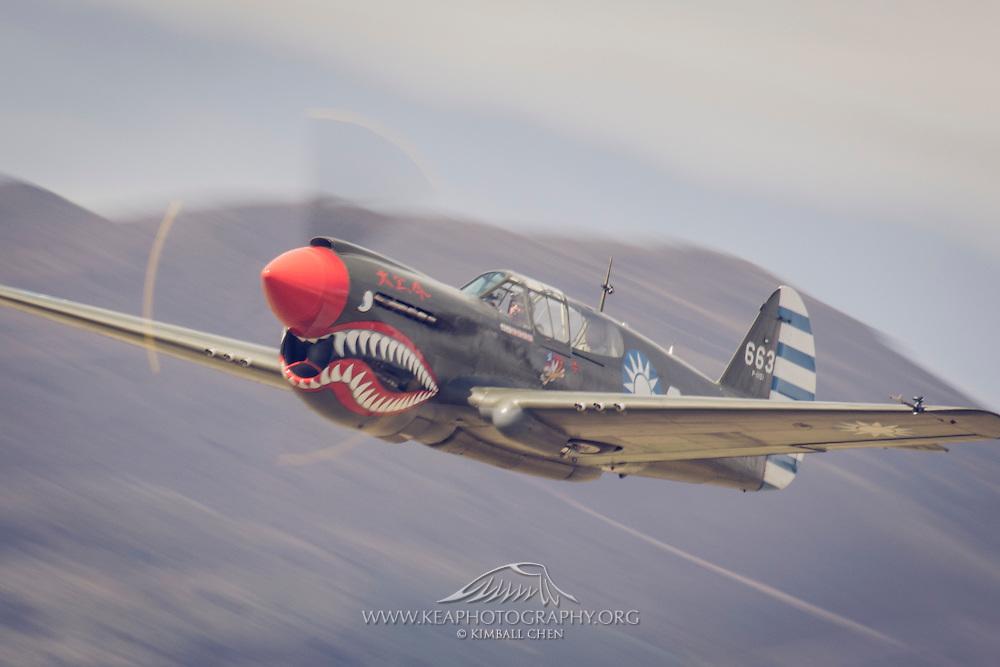 P40 Kittyhawk at Warbirds over Wanaka 2016, New Zealand