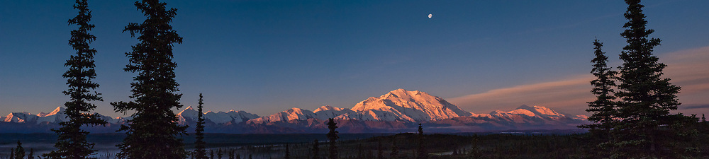 Sun rises on Denali and the Alaska Range as seen from Wonder Lake in Denali National Park and Preserve in Alaska. Also pictured is the setting moon, above Denali. Denali is North America's tallest peak at 20,310 feet and towers over 18,000 feet above the surrounding lowlands. Other mountain peaks pictured include: Mount Brooks, Mount Silverthrone, Mount Tatum, Mount Carpe and Mount Foraker. SPECIAL NOTE: This image is a panorama composite consisting of multiple overlapping images stitched together.