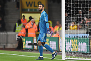 Wolverhampton Wanderers goalkeeper Rui Patricio (11) during the Premier League match between Wolverhampton Wanderers and Tottenham Hotspur at Molineux, Wolverhampton, England on 3 November 2018.