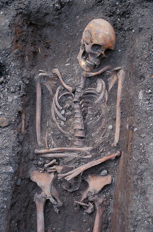Europe, Norway, Trondheim, Archaeologists examine grave sites at Nidaros Cathedral.