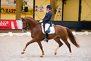 Femke Beljon - Discovery<br /> Finale KNHS-Subli Kampioenschap Jonge Dressuurpaarden 2013<br /> © DigiShotsFemke Beljon - Discovery<br /> Subli 2013<br /> © DigiShots