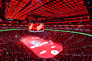 DETROIT, MICHIGAN - SEPTEMBER 21, 2017 -  The Detroit Red Wings pre-season home opener and the teams first game at the new Little Caesars Arena, Saturday, September 23, 2017. (Photo by Bryan Mitchell)