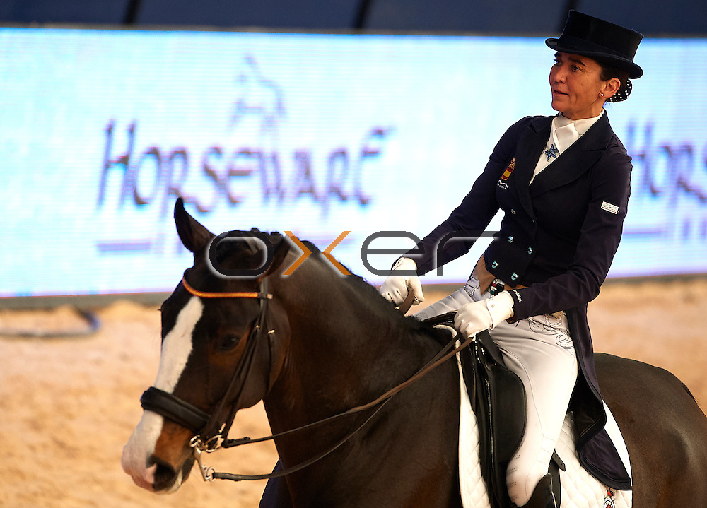 MADRID, SPAIN - NOVEMBER 29: Madrid Horse Week 2015 at IFEMA on November 29, 2015 in Madrid, Spain. (Photo by Manuel Queimadelos / Oxer Sport)