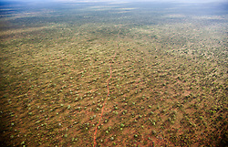 A single dirt road winds over country to the south of Broome.