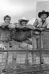 Three ranch hands hanging out on a metal gate
