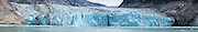 Panorama of the terminus of the Dawes Glacier in Southeast Alaska.