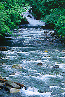 Cascading water of Sheep Creek.  In late summer Chum Sakmon migrate upstream to spawn.  Tongass National Forest, South of Juneau, Alaska.