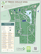 "Vector map of Centennial Park in Nashville, Tennessee. The map is of the ""If Trees Could Sing"" program sponsored by The Nature Conservancy and Metro Park Department of Nashville. ""If Trees Could Sing"" is a video program in which music artists talk about various trees and their important role in our lives. Use this map to find the interactive tree signs for each music artist."