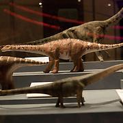 2011-04-11-World's Largest Dinosaurs AMNH