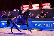 Wilton Porter - Delinquent Jx<br /> Jumping Zwolle 2018<br /> © DigiShots