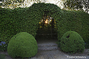 Garden at the Wythe House at sunset.