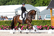 Lars op 't Hoog - Maximus<br /> Excellent Dressage Sales<br /> Longines FEI/WBFSH World Breeding Dressage Championships for Young Horses 2016<br /> © DigiShots