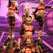 7007_Crimson Heat Tigers  - Crimson Heat Tigers  Small Senior Level 3 A
