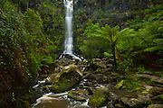 erskine falls, otway national park victoria