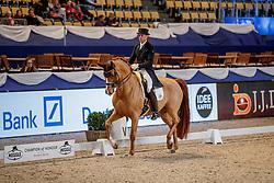 KOSCHEL Christoph (GER), Ballentines<br /> München - Munich Indoors 2019<br /> Preis der Liselott und Klaus Rheinberger Stiftung<br /> Grand Prix de Dressage (CDI4*) <br /> Wertungsprüfung MEGGLE Champions of Honour,<br /> Qualifikation für Kür<br /> 21. November 2019<br /> © www.sportfotos-lafrentz.de/Stefan Lafrentz