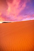 Evening light over dunes, Coral Pink Sand Dunes State Park, Kane County, Utah USA