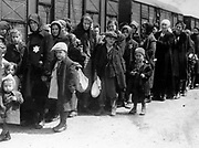 Arrival of a train containing Jews deported to Auschwitz death camp in Poland. Auschwitz-Birkenau (1940-1945) was the largest of the German Concentration and Extermination camps. 1.1 million people, 90 per cent of them Jews are thought to have died there most of them in the gas chambers.