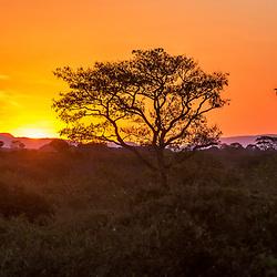 """""""Pôr do Sol no Pantanal (Paisagem) fotografado em Corumbá, Mato Grosso do Sul. Bioma Pantanal. Registro feito em 2017.<br /> <br /> <br /> <br /> ENGLISH: Pantanal Sunset photographed in Corumbá, Mato Grosso do Sul. Pantanal Biome. Picture made in 2017."""""""