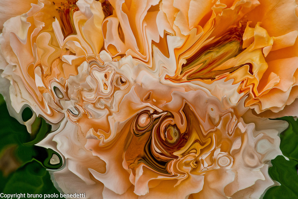 abstract shades of orange color dominant on white and green fluid colors background