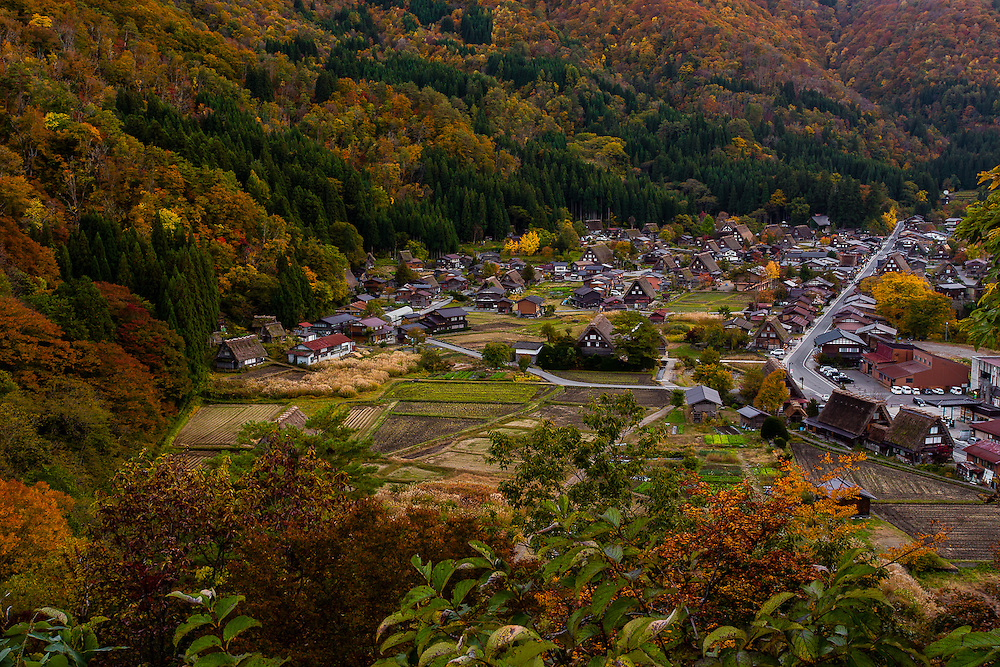 The small village of Ogimachi, with its traditional thatched roof houses, stands in the middle of a valley. During Autumn, the woods in the surrounding mountains turn to several shades of green, organge and red.