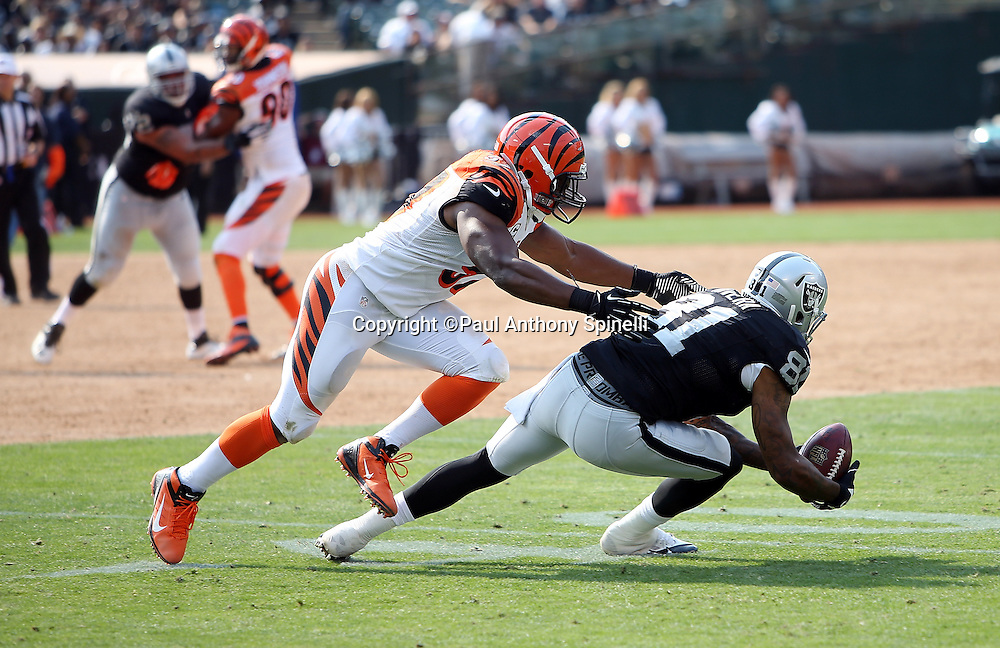 Oakland Raiders tight end Mychal Rivera (81) gets tackled by Cincinnati Bengals outside linebacker Vincent Rey (57) as he catches a fourth quarter pass short of a first down during the 2015 NFL week 1 regular season football game against the Cincinnati Bengals on Sunday, Sept. 13, 2015 in Oakland, Calif. The Bengals won the game 33-13. (©Paul Anthony Spinelli)