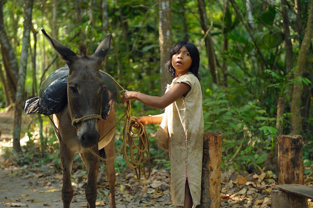 Arhuaco Indian kids, Indigenous, Arrecifes, Forest, Park Tayrona, Parque Nacional Tayrona, Department Magdalena, Colombia