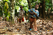 Tanic Kouakou, 8, (R) and Samson Apia Kouadio, 6, walk back from picking tomatoes on their father's cocoa plantation near the town of Moussadougou, Bas-Sassandra region, Cote d'Ivoire on Monday March 5, 2012.