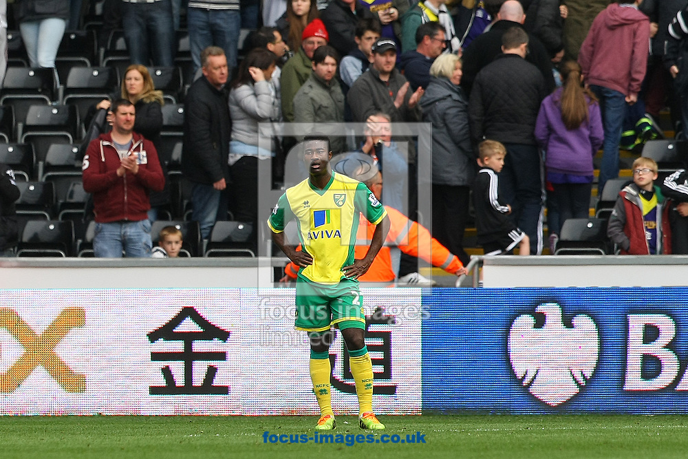 Alexander Tettey of Norwich looks dejected at the end of the Barclays Premier League match at the Liberty Stadium, Swansea<br /> Picture by Paul Chesterton/Focus Images Ltd +44 7904 640267<br /> 29/03/2014