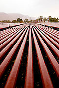 Israel, Eilat, an industrial facility for growing red algae Rhodophyta