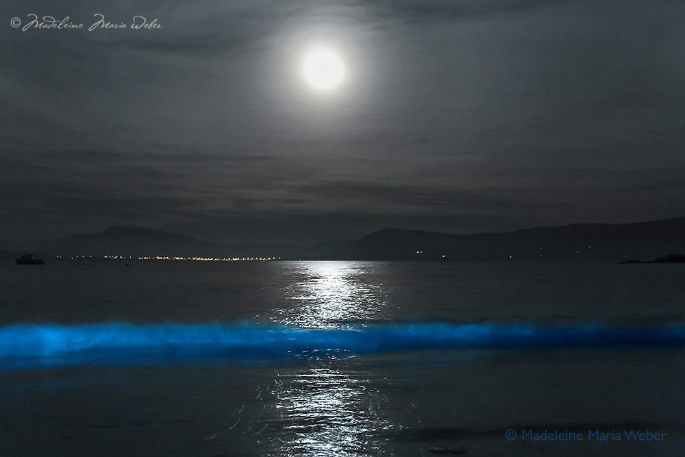 BIOLUMINESCENCE in the heart of Ballinskelligs, Southwest Kerry, Ireland, overlooking Waterville. <br />