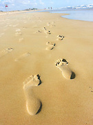 Human footsteps leading away in the sand