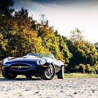 Eagle E-Type<br /> Photoshoot, Ashdown Forest<br /> 22nd October 2014<br /> Images Copyright Malcolm Griffiths<br /> Digital Images L_024643 1.jpg<br /> Contact:07768 230706<br /> www.malcolm.gb.net