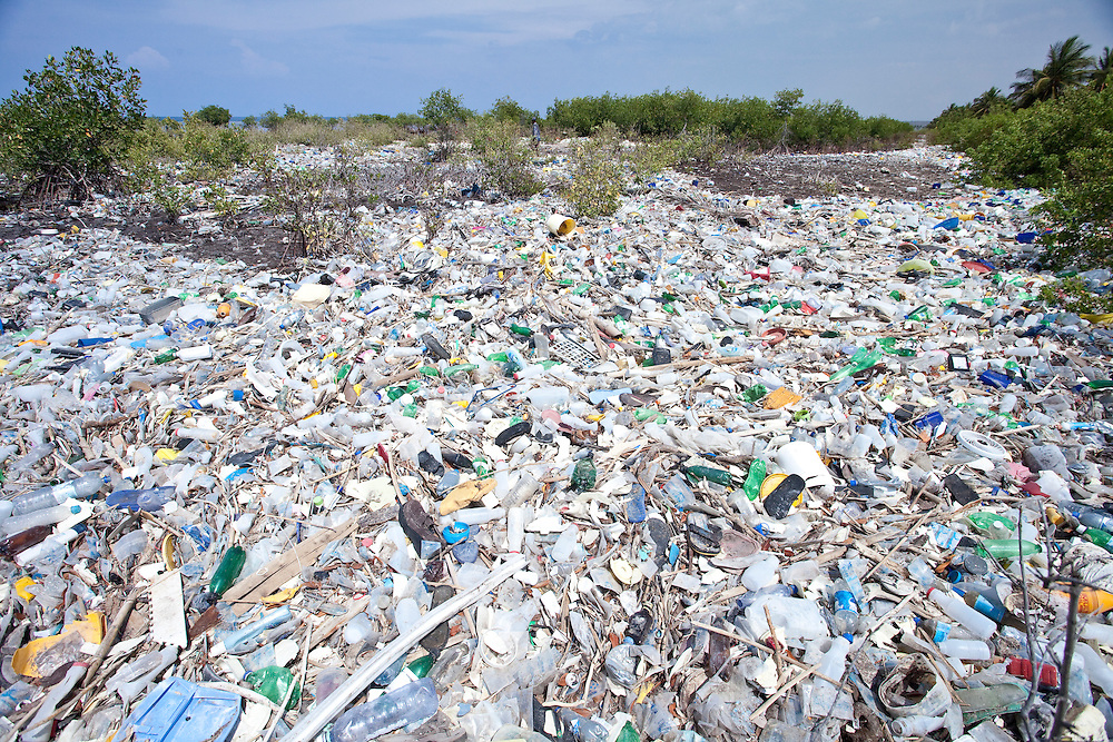 Piles of trash accumulate around mangrove on the north coast of Ile de La Gonave, Haiti