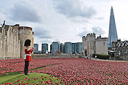 """Blood Swept Lands &  Seas Of Red"" - Tower Of London"