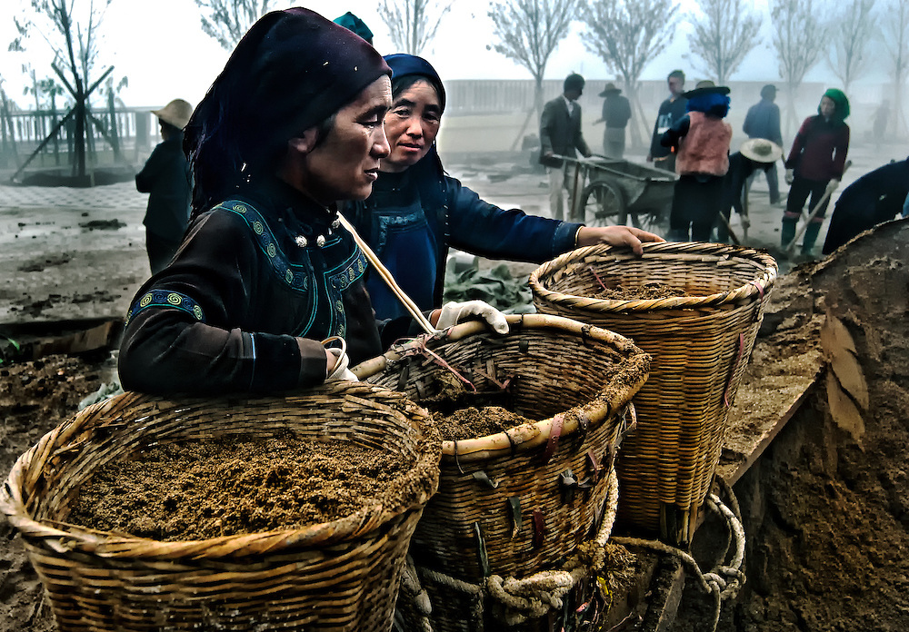 Hani women laborors in the early morning mist in Yuanyang, China