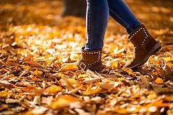 THEMENBILD - Herbst im Wiener Prater. Das Bild wurde am 27. Oktober 2013 aufgenommen. im Bild Stiefel einer Spaziergaengerin im Laub // THEMES PICTURE - Autumn at Prater in Vienna. The image was taken on october, 27th, 2013. Picture shows Boots of a Woman walking throug leaves , AUT, EXPA Pictures © 2013, PhotoCredit: EXPA/ Michael Gruber