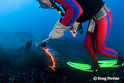 diver Bud Turpin uses gaff to take sample of erupting pillow lava at ocean entry from Kilauea Volcano, Hawaii Island ( the Big Island ), Hawaii, U.S.A. ( Central Pacific Ocean ) MR 381