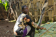 Africa, Ethiopia, Omo region, Chencha, Dorze village shaving a leaf of the fruitless Banana. These shavings are the major ingredient in the local bread