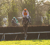 Wexford Point to Point