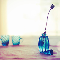 Close up of a small blue pitcher with a dryed flower on the first plan and two little blue tea cups on the blurred background with the sunlight shining from the window behind.