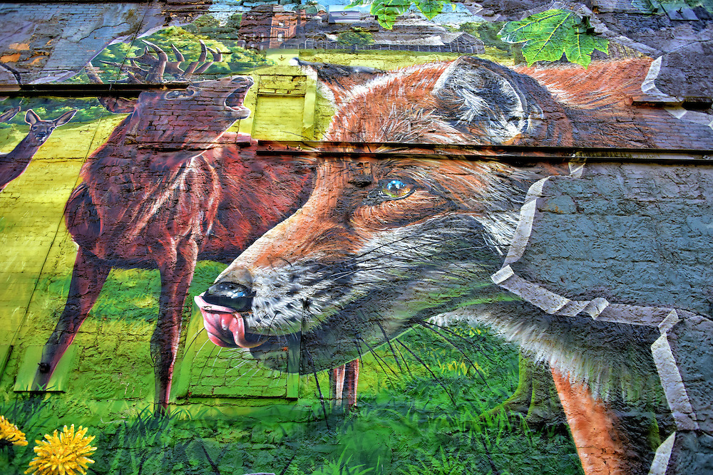 Fellow Glasgow Residents Wildlife Mural in Glasgow, Scotland<br /> This fox, deer and elk are part of an enormous mural facing the Ingram Street parking lot.  The painting features wildlife living in the city parks, hence the name, &ldquo;Fellow Glasgow Residents.&rdquo;  This photorealistic work of art is by Sam Bates, known on the street as Smug One. With talent like this, Sam has every reason to be smug.