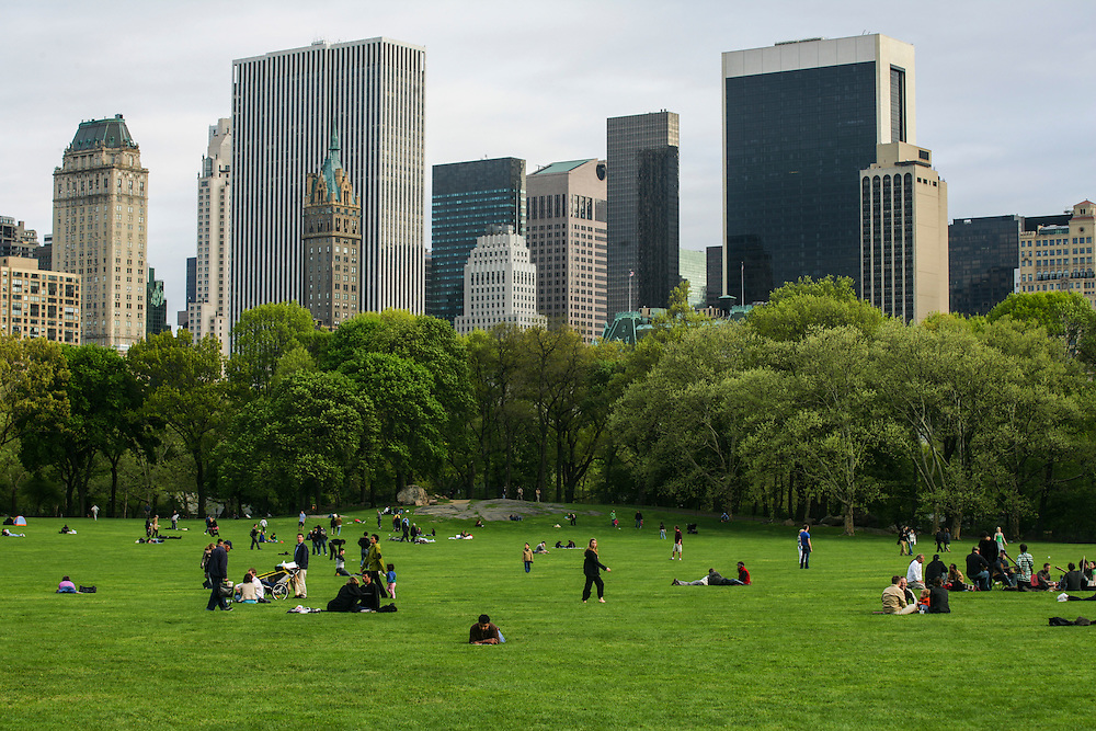 People relaxing at Central park in New York.
